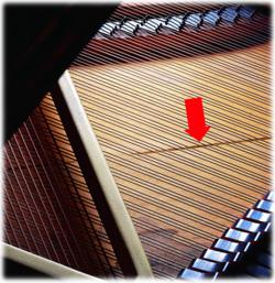 Control piano humidity to prevent damage to soundboard, tuning pins, pinblock, loose action screws, delaminate pinblock and bridge.
